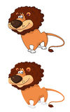 Courageous lion Stock Image