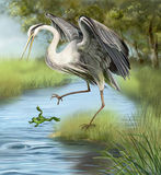Illustration, crane hunting a frog in the water. Royalty Free Stock Images