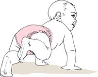Illustration of Crawling baby girl in diaper. Made in adobe illustration Stock Photos