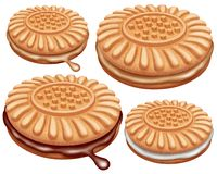 Illustration of creamy cocoa biscuits. by NB. Illustration of creamy cocoa biscuits.. Suitable for packaging printing royalty free illustration