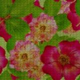 Illustration. Cross-stitch. Briar, wild rose, dog-rose. Seamless. Illustration. Cross-stitch. Briar, wild rose, dog-roseBriar, wild rose, dog-rose. Texture of Royalty Free Stock Image