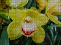Illustration. Cross-stitch. Orchid flower stock illustration