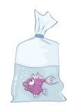 Illustration of  Cute Aquarium Fish. Cartoon Character. Small fish in capacity with water Stock Photo