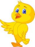 Cute baby bird cartoon Royalty Free Stock Photo