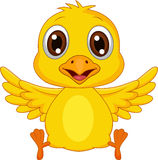Cute baby chicken cartoon Royalty Free Stock Image
