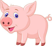 Cute baby pig cartoon Royalty Free Stock Photography