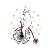 Illustration of cute bear riding an old-fashioned bicycle. Perfect for Birthday postcard or invitation Royalty Free Stock Photography