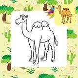 Illustration of cute camel. Coloring page Royalty Free Stock Image