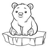 Illustration of cute cartoon baby Polar Bear Stock Image