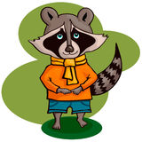 Illustration of cute cartoon raccoon Royalty Free Stock Images