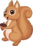 Cute cartoon Squirrel holding acorn. Illustration of cute cartoon Squirrel holding acorn vector illustration