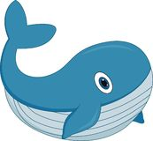 Cute cartoon whale on white background stock images