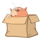 Illustration of a Cute Cat and a Box. Cartoon Character Royalty Free Stock Images