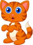 Cute cat cartoon Royalty Free Stock Photography
