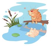 Illustration of a Cute Cat. Cartoon Character. The sad red fat striped cat sits on a shop and looks at the reflection Stock Photography