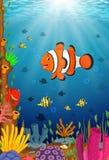Cute clown fish cartoon in the sea. Illustration of Cute clown fish cartoon in the sea Royalty Free Stock Image