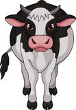 Cute cow cartoon Stock Photography