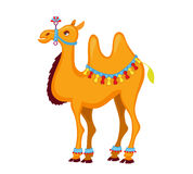 Illustration of cute decorated  camel cartoon. Stock Photo