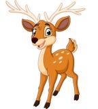 Cute deer cartoon vector illustration