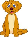 Cute dog cartoon sitting Royalty Free Stock Images