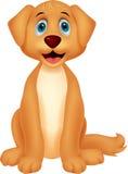 Cute dog cartoon sitting Stock Images