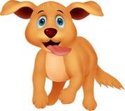 Cute dog running Royalty Free Stock Image
