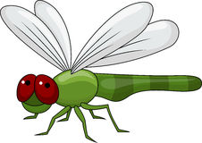 Cute dragonfly cartoon Stock Image