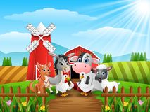 Cute farm animals in front of cattle warehouse Stock Photography