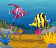 Cute fish cartoon in the sea. Illustration of Cute fish cartoon in the sea Stock Images