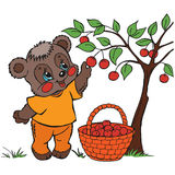 Illustration of a cute funny little bear. Royalty Free Stock Photo