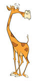 Illustration of a cute giraffe cartoon Stock Image