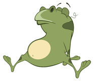 Illustration of a Cute Green Frog. Cartoon Character Royalty Free Stock Images
