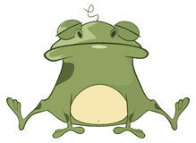 Illustration of a Cute Green Frog. Cartoon Character Stock Photography