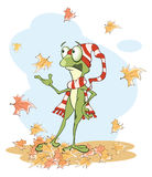 Illustration of a Cute Green Frog Royalty Free Stock Photo