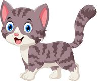 Illustration of cute grey cat cartoon. Isolated on white background vector illustration