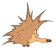 Illustration of a cute hedgehog Stock Image