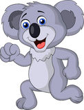 Cute koala cartoon running Stock Photography