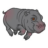 Illustration of cute naturalistic Hippopotamus Royalty Free Stock Photos