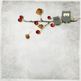Illustration of a cute owls. Sitting on a branch  on a gray textured background Stock Images