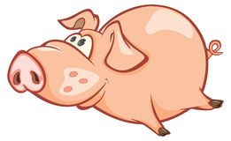 Illustration of a Cute Pig. Cartoon Character. Little cheerful pink pig with a big nose and a cheerful tail Royalty Free Stock Image