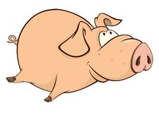 Illustration of a Cute Pig. Cartoon Character Stock Photo
