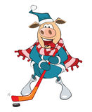 Illustration of a Cute Pig Ice Hockey Player. Cartoon Character. Cheerful pig the sportsman hockey player Stock Photo