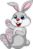 Cute rabbit bunny sitting Stock Images