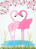Illustration cute romantic waterbird Stock Image