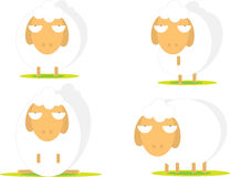Illustration of cute sheep Stock Photography