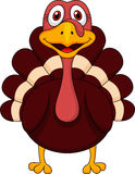 Cute turkey cartoon Stock Images