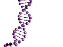 Illustration 3d abstrakten DNA-Helixes Lizenzfreie Stockfotos