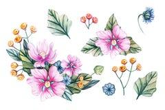 Illustration d'aquarelle avec des bouquets des wildflowers illustration stock
