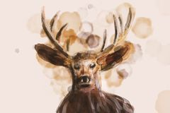 Illustration d'aquarelle comme le portrait d'un cerf commun illustration stock