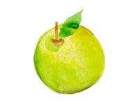 Illustration d'aquarelle d'une pomme Photographie stock